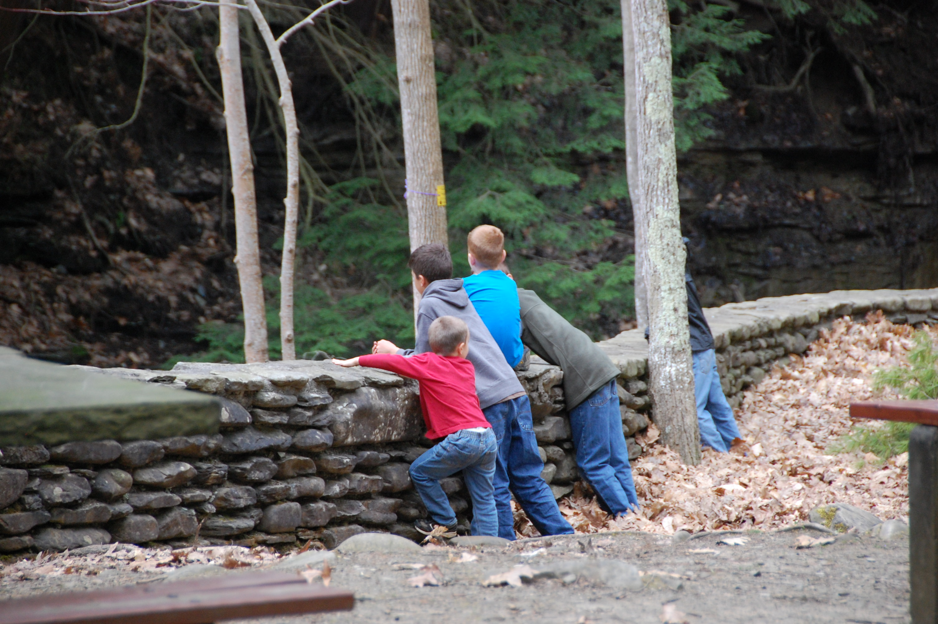 The boys checking out the waterfalls.