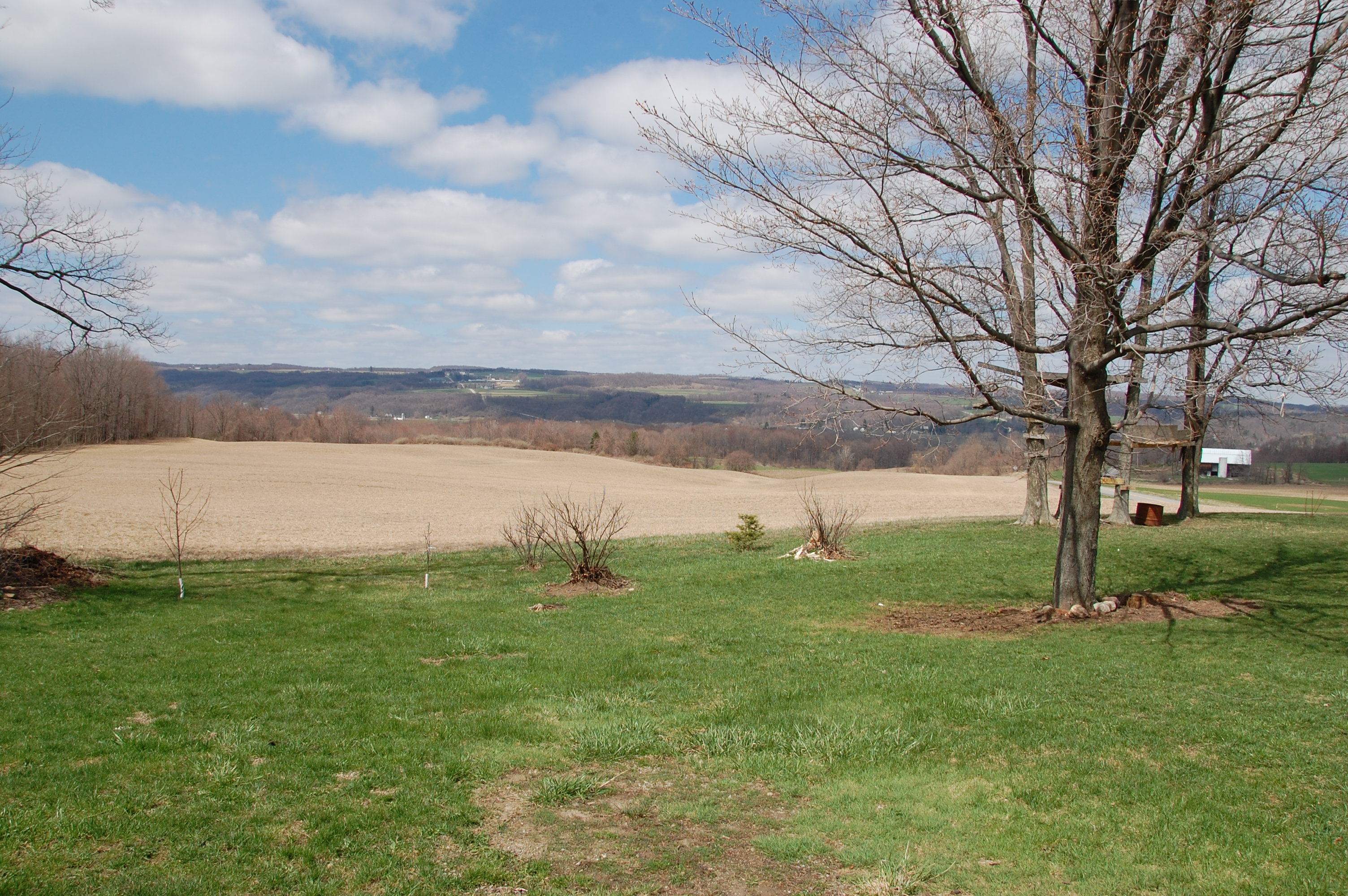 The view out Tammi's kitchen window. Big farms all on the hillside.