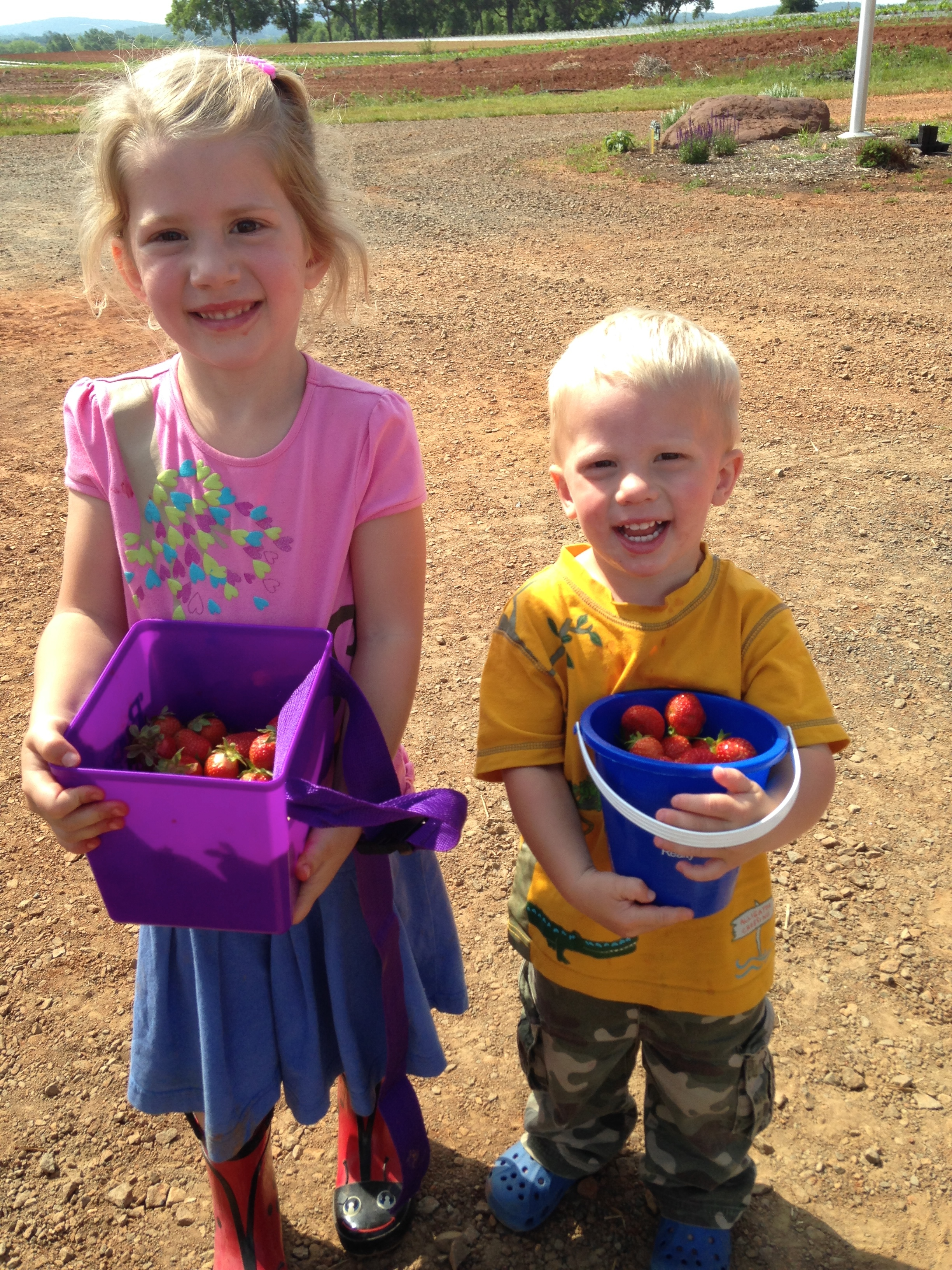 Kaylin and Kolby did a great job picking berries.