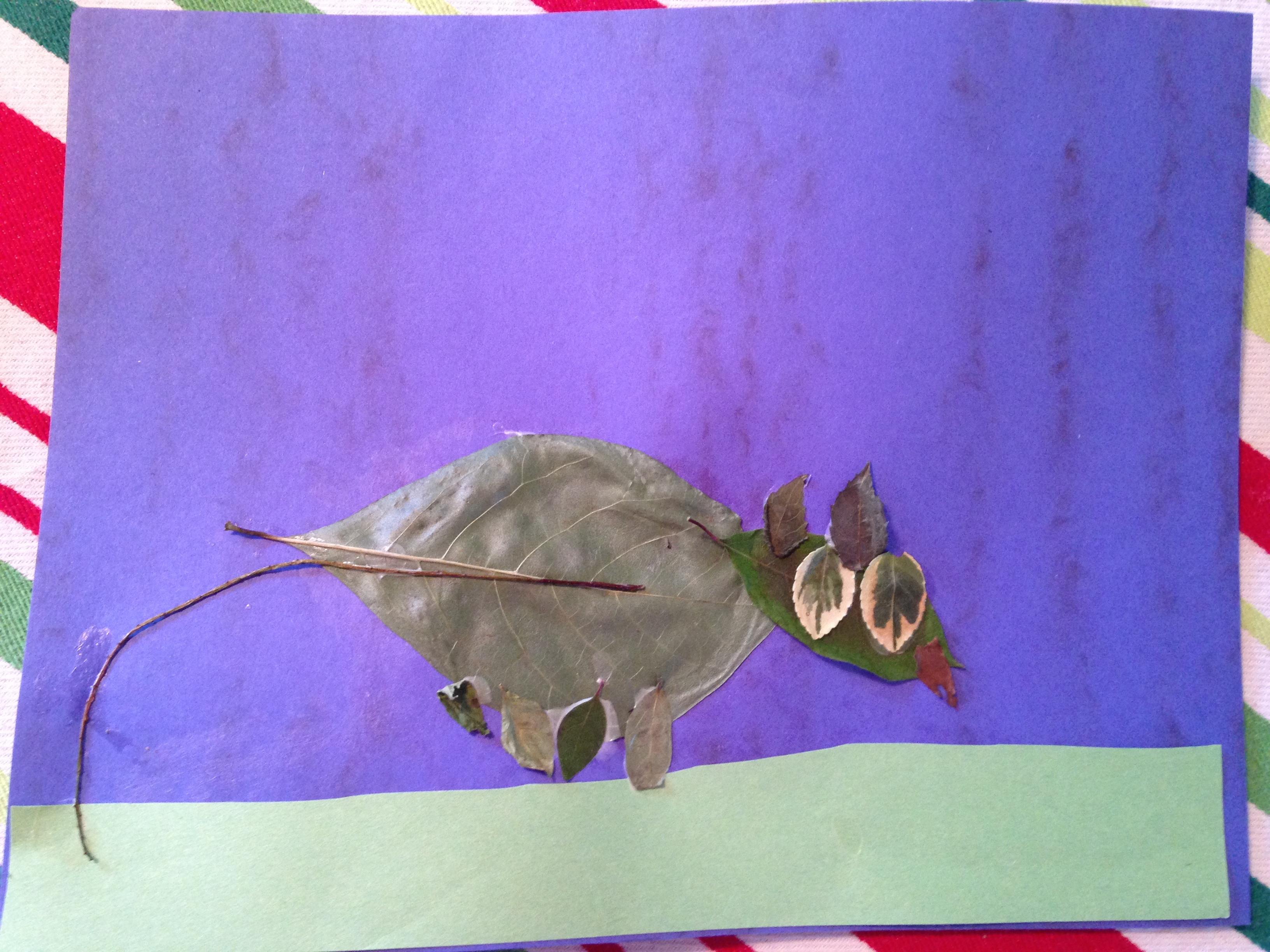 Bryant's leaf rat he made for a science project.