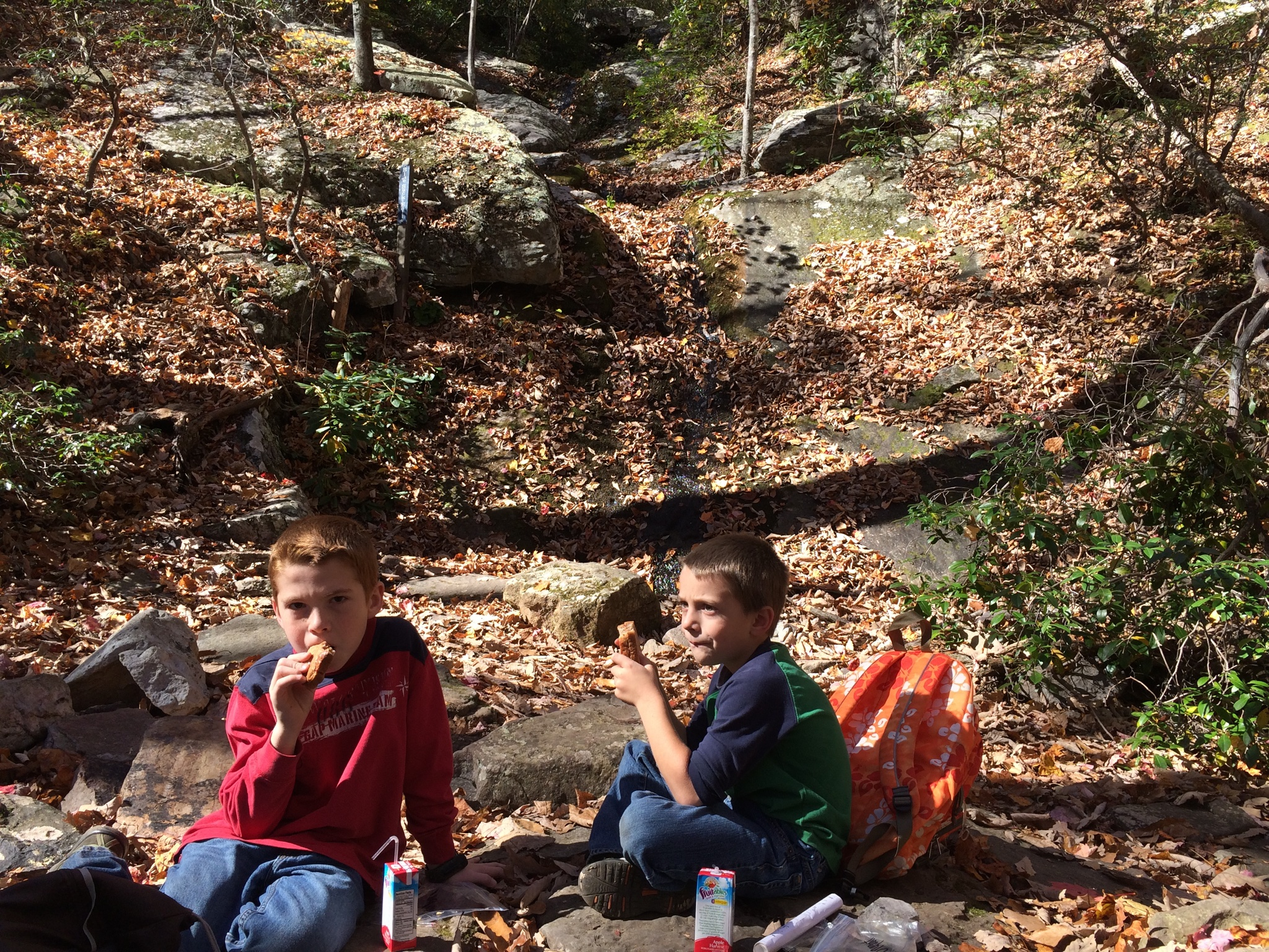 Cooper & Bryant eating lunch with the waterfall in the background. :-)