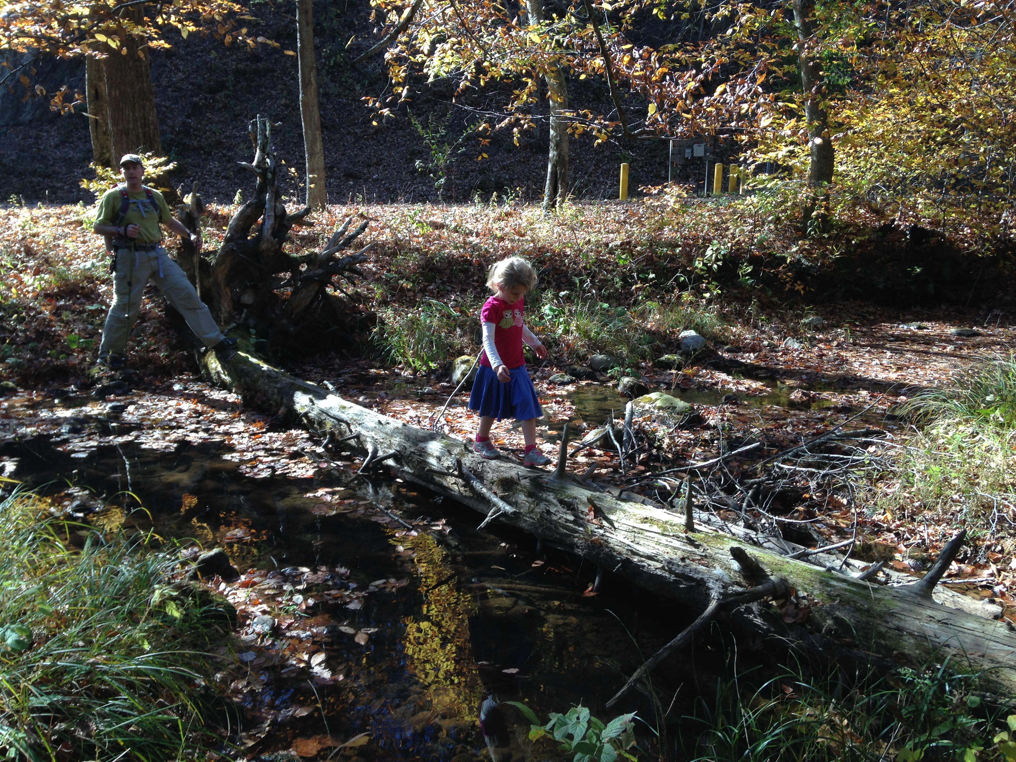 Kaylin did such a great job crossing creek on the fallen log.