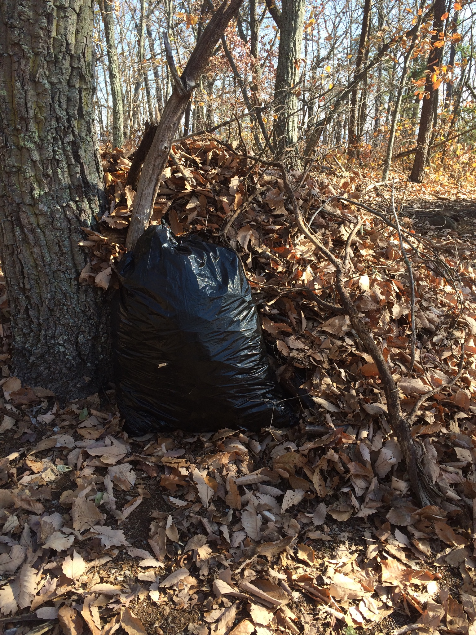 Our bivy with the front door in. (Yes the bag of leaves served as our door.)