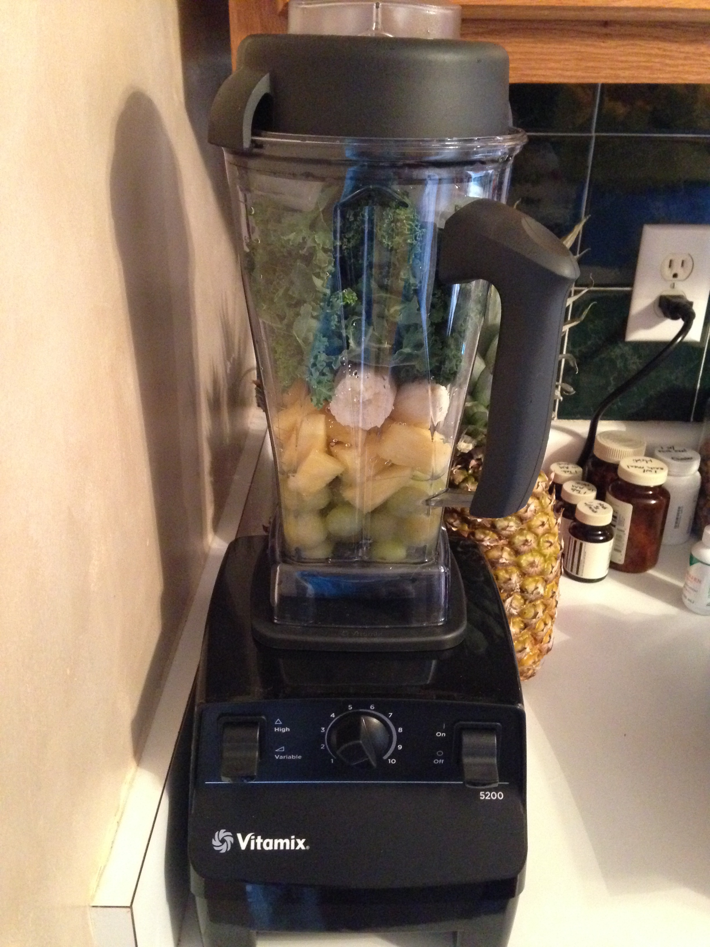 My new Vita-Mix ready to blend our first smoothie!
